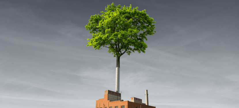 Tree coming out of a factory smokestack.