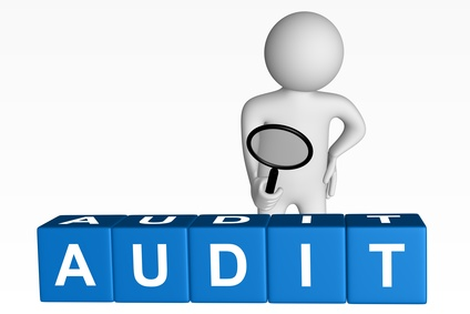 Audit Techniques & Best Practices