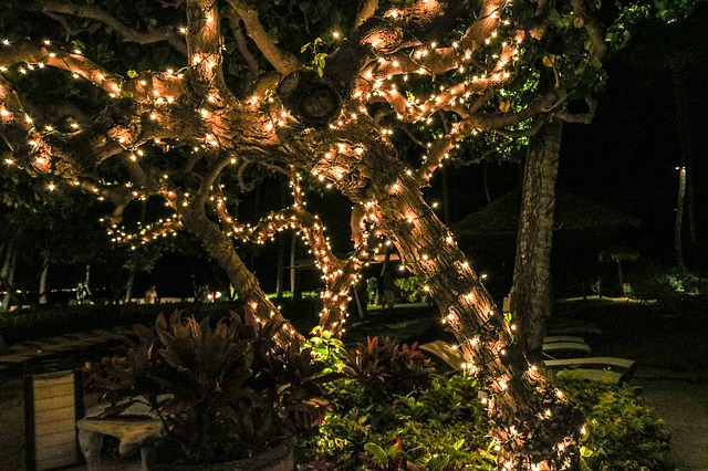 light up main and other garner holiday events