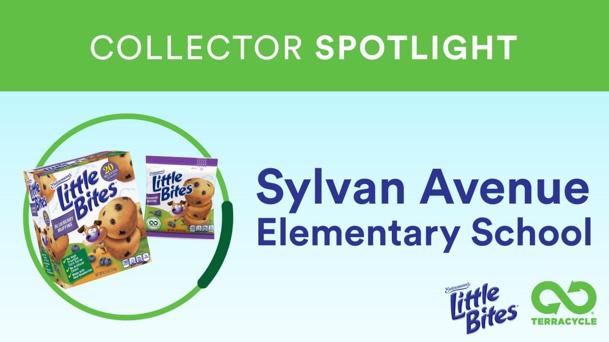 TerraCycle® Collector Spotlight: Sylvan Avenue Elementary School
