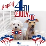Two dogs wearing 4th of July outfits.