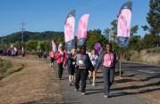 flags 2013 San Francisco Susan G. Komen 3-Day breast cancer walk