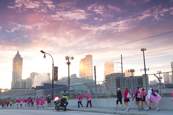 skyline 2013 Atlanta Susan G. Komen 3-Day Breast Cancer Walk