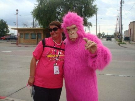 susan g. komen 3-Day breast cancer walk blog full series walkers all seven events nicole hercules