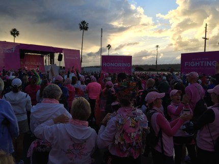susan g. komen 3-Day breast cancer walk blog 60 miles san diego