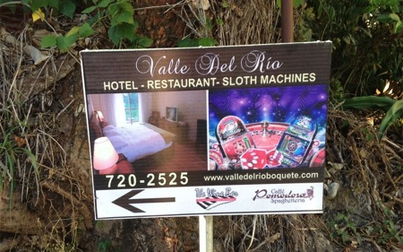 Sloth Machines its really furry gambling Boquete Panama
