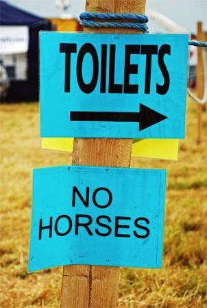 Poor horses