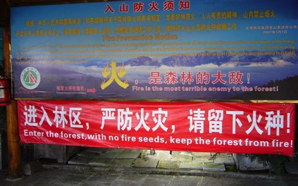 No fire seeds in the forest