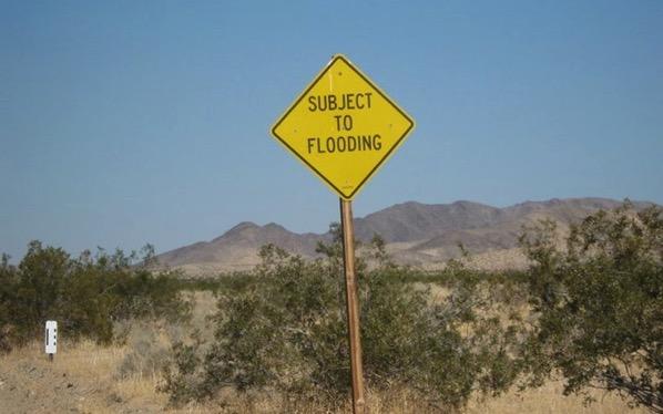Desert Joke