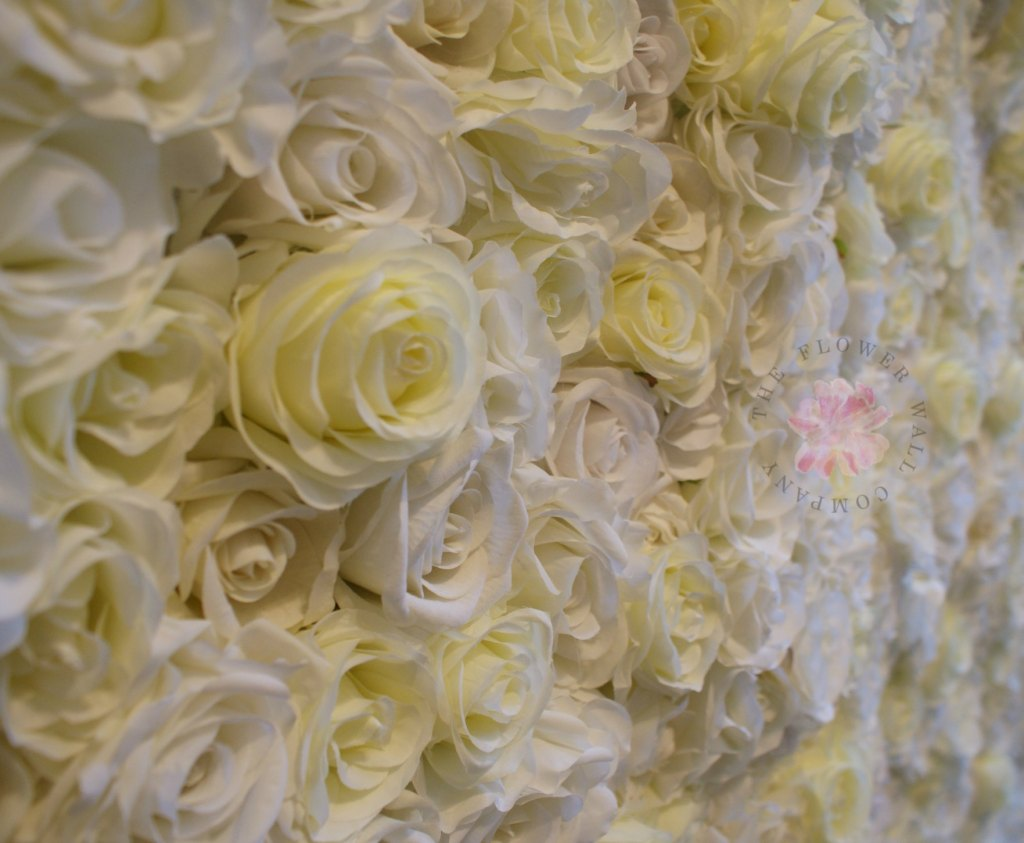 rose flower wall