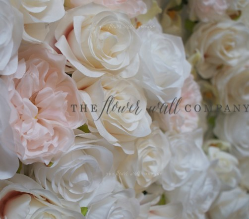 blush orchid rose peony pink white flower wall