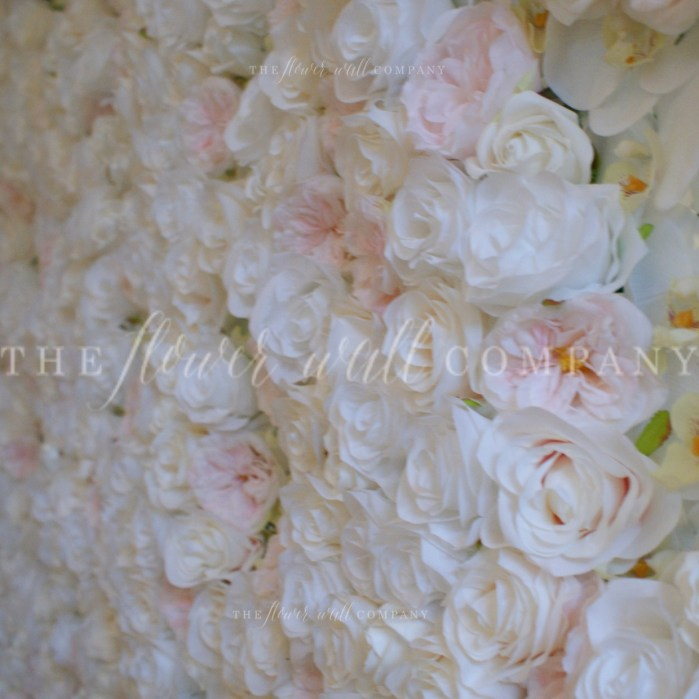 blush white flower wall