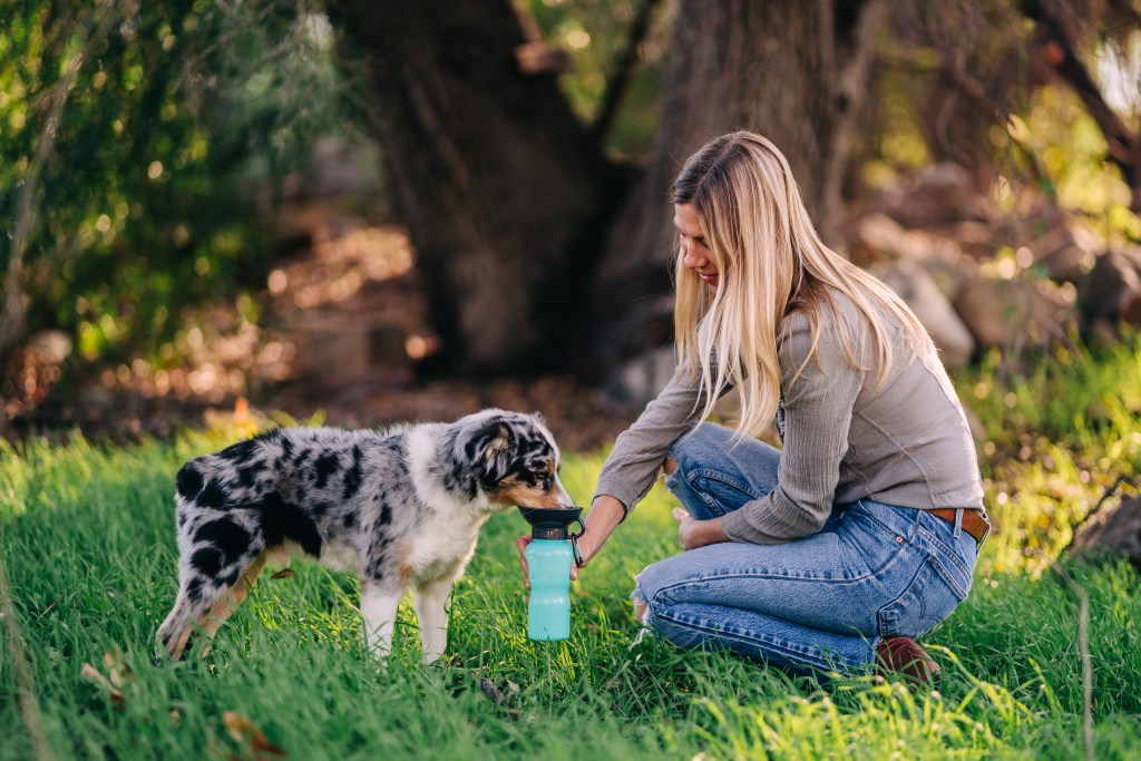 A woman is seen giving her dog water in the woods with a blue Highwave  AutoDogMug dog bowl water bottle