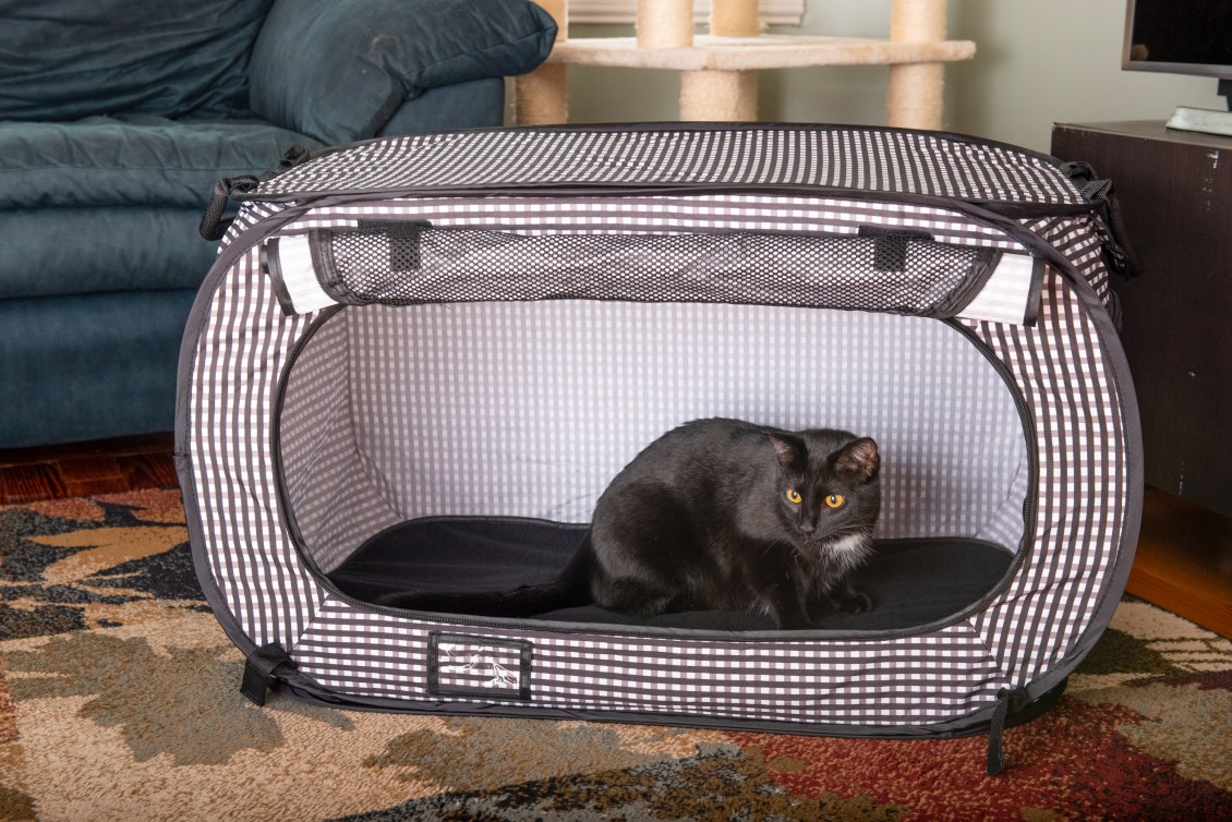 A black cat is seen sitting in a black & white checkered collapsible travel cat crate from Necoichi