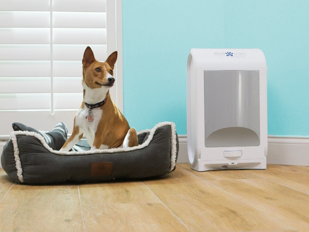 A fawn colored dog sits in a gray dog bed next to an EyeVac touchless vacuum for pets