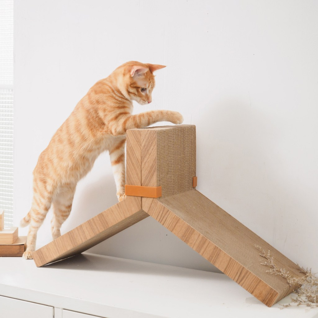 An orage tabby cat is seen climbing on a Katris teo piece lynks cat scratching post