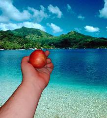 photo editing arm holding apple on a beach