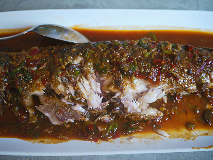 fish in Pixian chili bean sauce