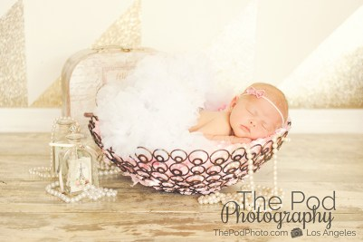 baby-in-basket-with-tutu