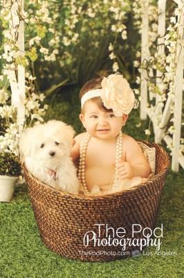 Dog-And-Baby-In-Bucket-Portraits-Mar-Vista