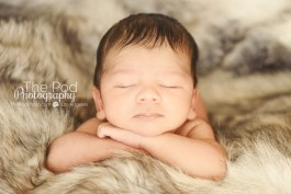 glray-fur-cute-head-holding-infant-los-angeles-portrait