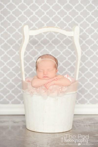 baby-in-milk-crate-anne-geddes-newborn-photography