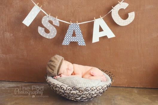 boy-name-banner-unique-newborn-photo-shoot-ideas
