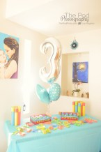 The-Pod-Photography-Hollywood-Birthday-Party-Photographer-Details-Frozen-Theme-How-To-Photograph-A-Birthday-PArty