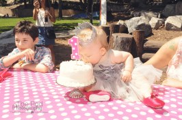cake-table-happy-first-birthday-party-photographer-the-pod-photography-el-segundo-birthday-girl