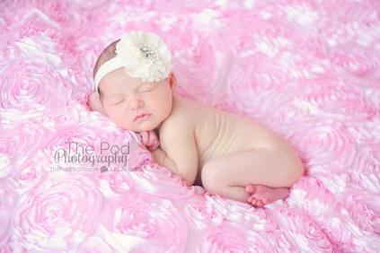 calabasas-newborn-photographer