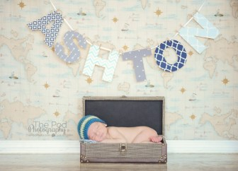 creative-baby-pictures-suitcase-name-banner