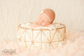 best-baby-photographer-pacific-palisades