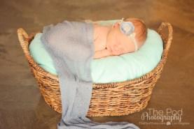 encino-newborn-pictures