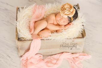best-baby-photography-culver city