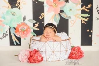newborn-photographer-culver-city