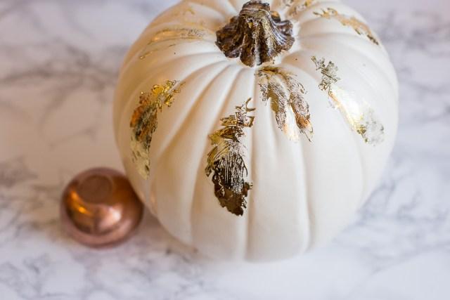 rk-tow-pumpkins-9403