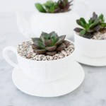 Repurpose Your Teacups With These Diy Crafts Tea Tea Accessories Recipes The Tea Kitchen