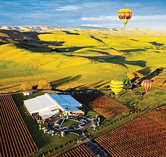 Ballooning above the Sileni Winery in Hawke's Bay.