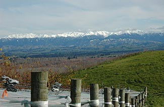 The stunning beauty of NZ's landscape is reflected in the quality of its food and wine.