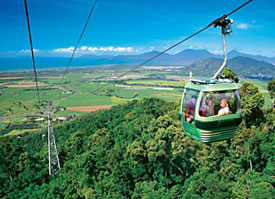 Glide smoothly and silently above the world heritage rainforest, enjoying amazing views, on the world's second longest gondola ride.
