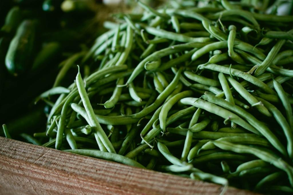 Green beans for a Thanksgiving recipe.