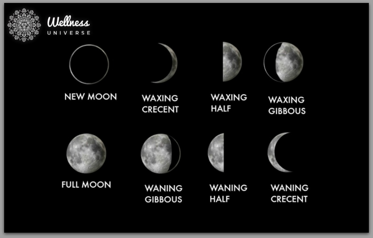 Understanding Our 8 Moon Cycles The Wellness Universe Blog