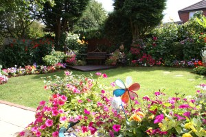 Bicester in Bloom 2011 - Best Kept Back Garden