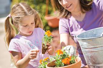 Gardening set to be taught in schools