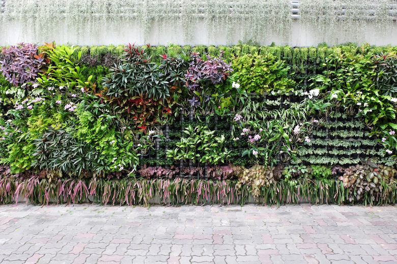 Living wall full of greenery