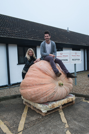 Competition – how many seeds in this pumpkin?