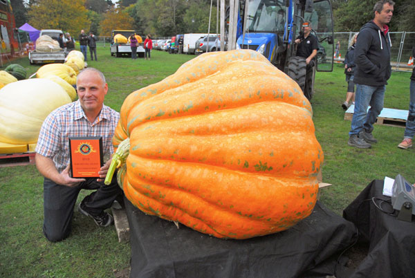 Giant Paton Pumpkin