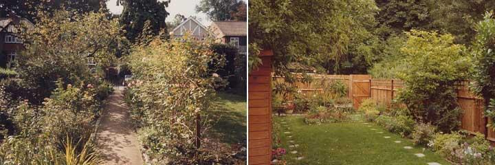 the garden in 1988
