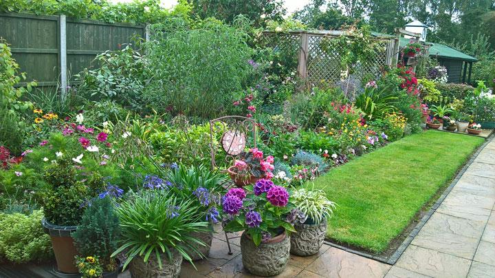 Theresa's Garden in August