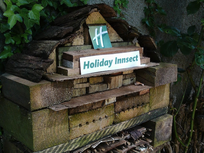 green fingered blog bug hotel